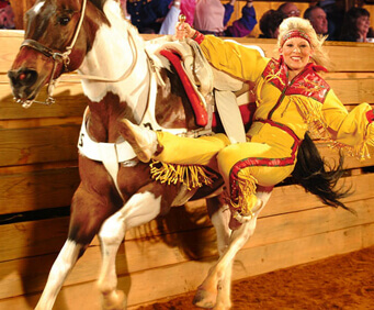 Branson - It's What to do in Missouri, Dixie Stampede