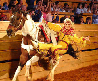 The Dixie Stampede