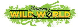 Branson's Wild World VIP Animal Adventure, Blacklight Mini Golf & Jungle Arcade