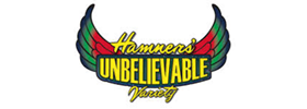Hamners' Unbelievable Family Variety Show 2019 Schedule